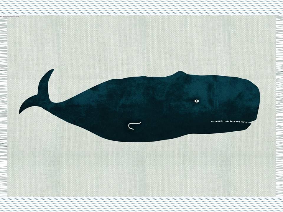 Tappeto balena blu amica d'avventura per la cameretta dei ragazzi.