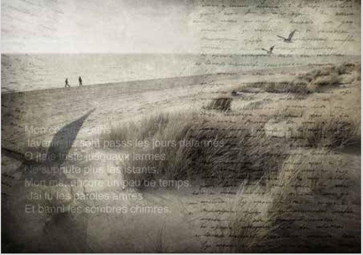 spiaggia carta da parati tridimensionale